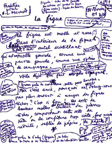 ponge_figue-06f85